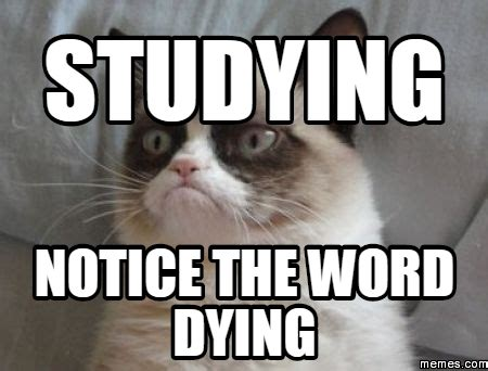 Studying Meme - 12 study methods that will make your life easier