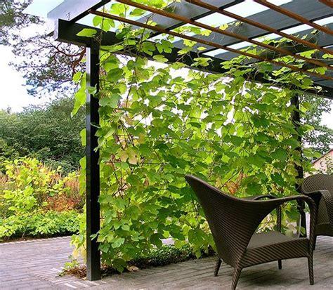 Garten Gestalten Modern 3149 by Garden Trellis Support Plants Reach Their Potential