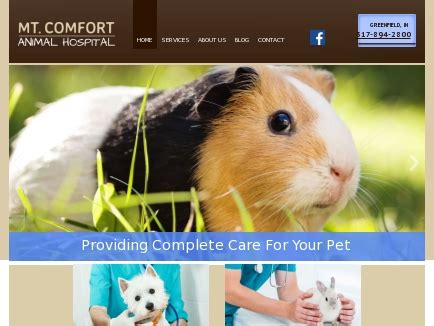 mount comfort animal hospital care and comfort veterinary hospital 28 images care