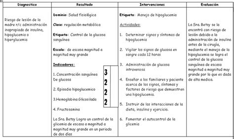 plan de cuidado de enfermeria para hipertension revista electronica de enfermeria guayaquil ecuador plan