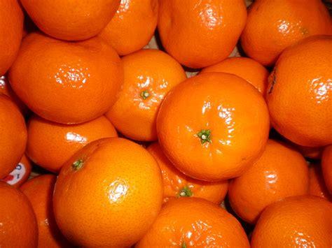 Jeruk Murcott Australia mandarin review herm 232 s eau de mandarine ambr 233 e