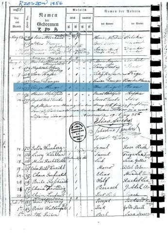 Rzeszow Poland Birth Records Ringel Roots In Galicia Family History Machine