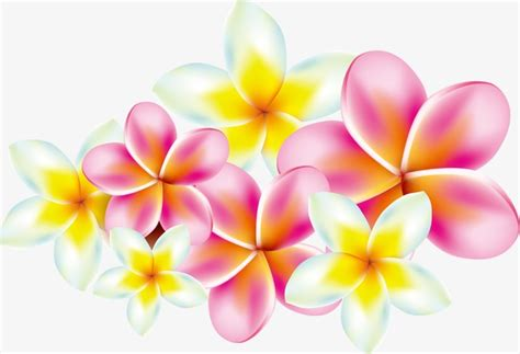 plumeria vector plumeria flowers pattern png and vector for free download