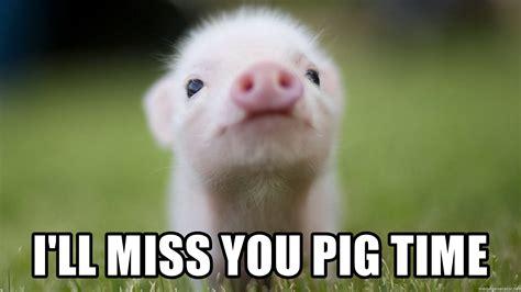 I Will Miss You Meme - i ll miss you pig time cute pig meme generator