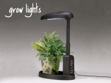 grow lights  indoor plants table top grow lights