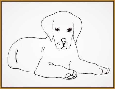 imagenes bonitas para colorear de perritos las hermosas imagenes para colorear perro imagenes de
