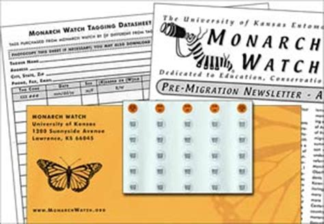 Monarch Watch Migration Tagging Tagging | monarch tagging kit monarch watch