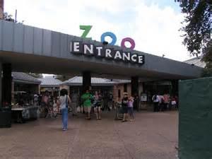 10 worst zoos for elephants houston zoo forustobe