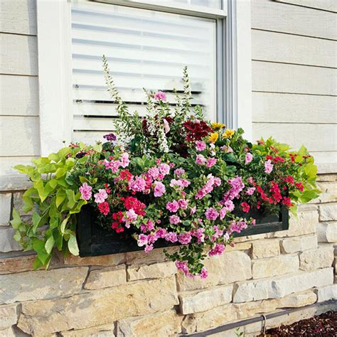 Planter Ideas Sun by 10 Easy Beautiful Window Boxes For Sun