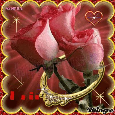 imagenes rosas san valentin rosas y sortija para el dia de san valentin sofia picture