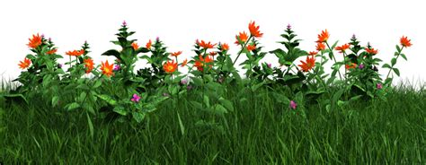 flower garden png free png grass and flowers by artreferencesource on