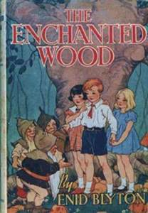 secrets of the woods wood folk series book three books 59 best images about book club enid blyton on