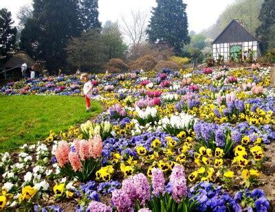 botanischer garten bielefeld gartenhof fr 252 hling im botanischen garten 171 verein freunde des