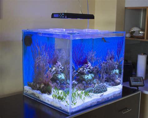 Aquarium Acrylic Jakarta jual akuarium akrilik murah hub aditya 089619395080