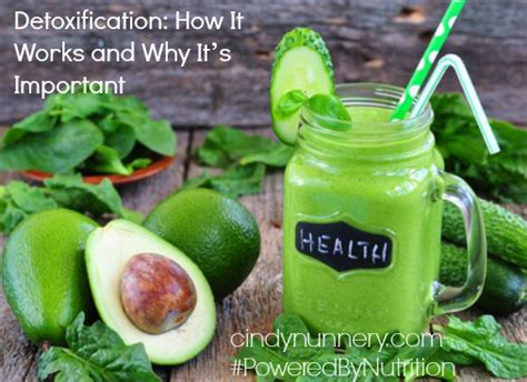 Detox Blogg 2015 by Detoxification How It Works And Why It S Important
