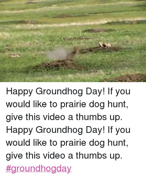 groundhog day how many days did it last i m a rodent not a meteorologist ah yes groundhog day