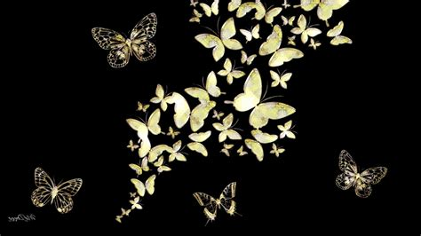 wallpaper gold butterfly black abstract gold jewels butterfly mirror walldevil