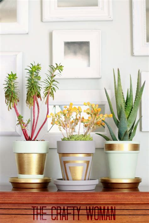 creative ways  upgrade  boring flower pots