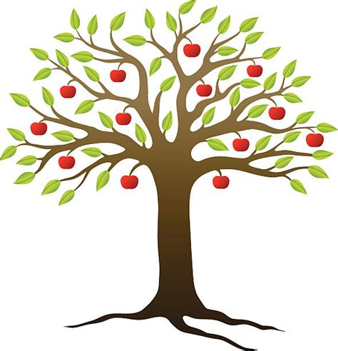 apple tree clipart royalty free apple trees clip vector images