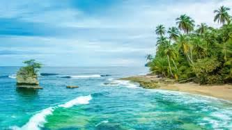 costa rica wild caribbean beach  manzanillo sandy beach