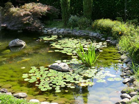 giardini con laghetti realizzazione di laghetti artificiali e giochi d acqua per