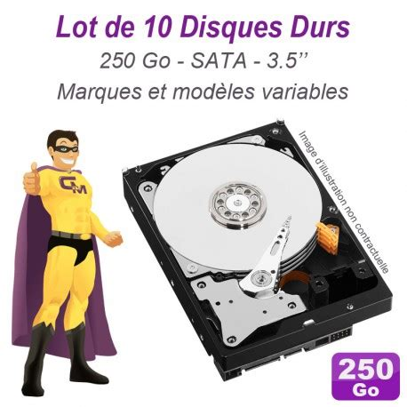 Hardisk 250 Gb Seagate Wdc Hitachi Sata lot de 10 disques durs 3 5 quot 250go sata western digital hitachi samsung seagate monsieurcyberman