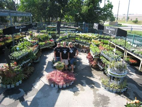 Houston Plant And Garden by 42 Best Images About Hc Retailers On Gardens