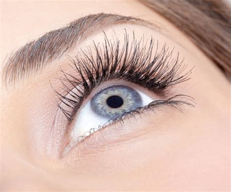 Eye Lash eyelash extension s salon