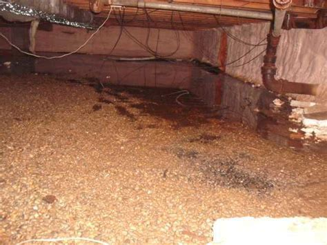 advanced basement systems crawl space repair photo album