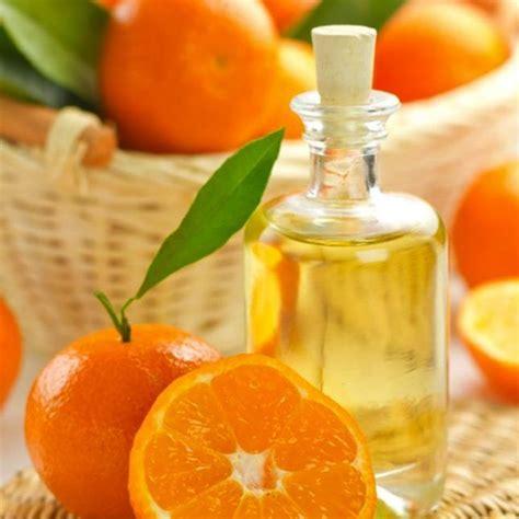 Alat Semprot Jeruk Nipis Cytrus Spray Lemon Jeruk Spray 3in1 9 pengharum ruangan bikinan sendiri yang membuatmu nggak perlu beli air freshener lagi