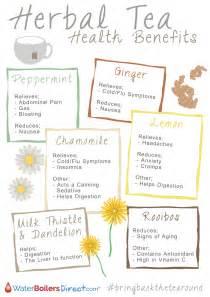 Herbal tea health benefits visual ly