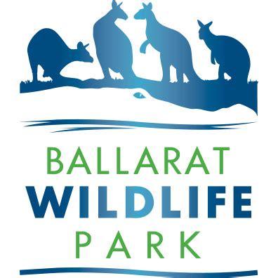 discount vouchers doncaster wildlife park ballarat wildlife park member discount native animals racv