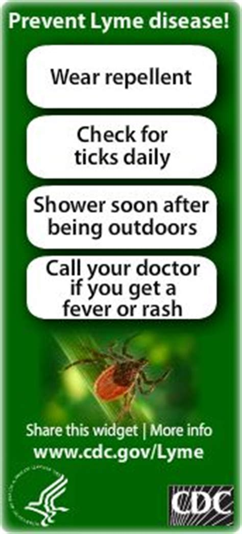 Lyme Disease Detox Center by 25 Best Ideas About Tick Bite On A Tick Tick