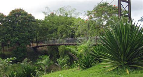 caguas botanical garden discovering puerto rico