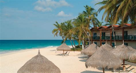 divi tamarijn aruba all inclusive resorts aruba oceanfront guest rooms divi aruba all inclusive