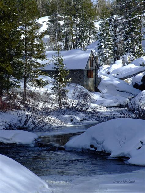 Winter Cottage by Winter Cottage By Donna Blackhall