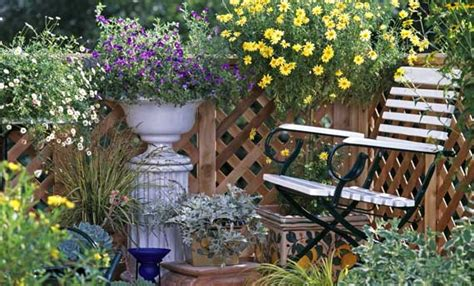 piante e fiori piante e fiori da coltivare a marzo leitv