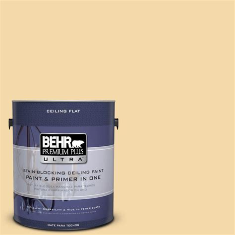 behr premium plus ultra 1 gal no ul180 19 ceiling tinted to caribbean interior paint