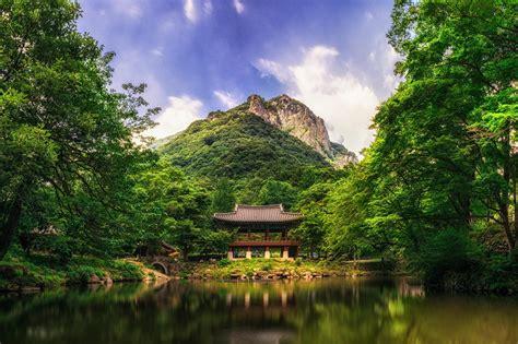 green korea wallpaper wallpaper trees landscape lake water reflection