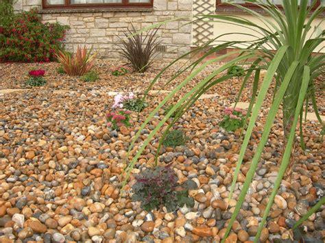 a low maintenance front garden 171 gbd garden design