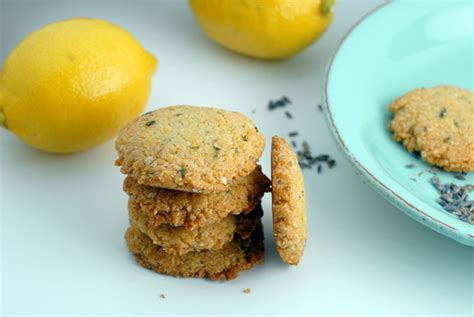 Elanas Pantry Cookies by 50 Gluten Free Baked Goods Where Get