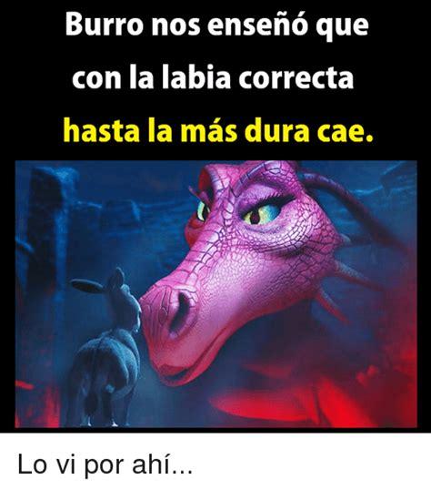Loose Vagina Meme - 25 best memes about labia labia memes