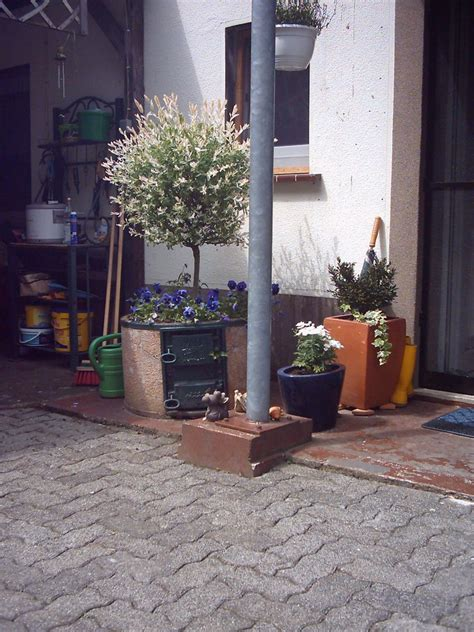 Die Besten Tomaten 3955 by Ruths Garten Meine Freizeitbesch 228 Ftigung