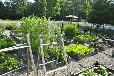 Planning A Vegetable Garden Planning Ideas For Your Vegetable Garden With Stafford