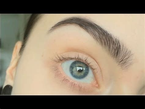 how to trim you eyebrows with clippers wiki with pictures requested how i dye pluck and trim my eyebrows youtube
