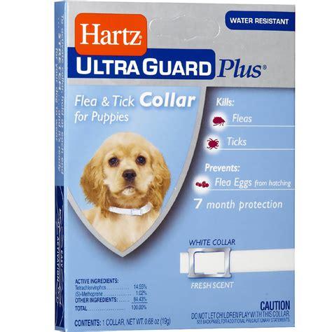 puppy flea collar hartz ultraguard plus flea tick collar puppy