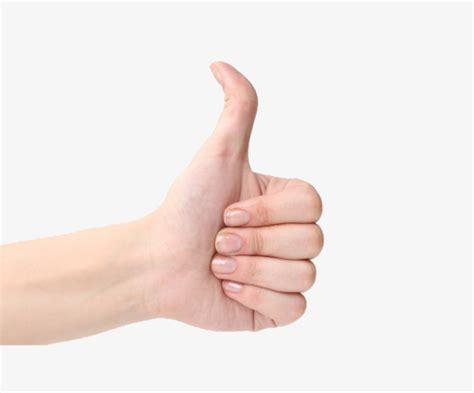 imagenes thumb up un pulgar arriba pulgar pulgar arriba pulgar direcci 243 n