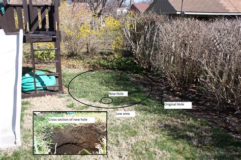 Small Sinkhole In Backyard by Surprising Small Sinkhole In Backyard Images Inspiration