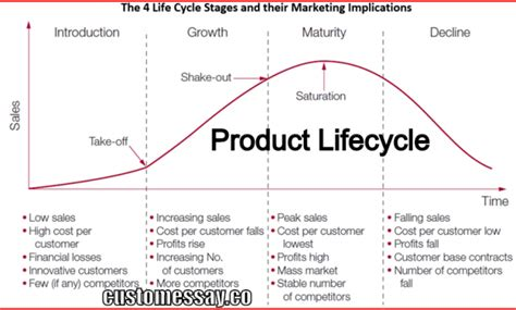 Product Cycle Essay by What Is Product Lifecycle