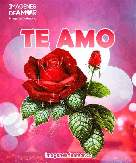 imagenes bonitas rosas rojas im 225 genes de rosas rojas con frases te amo y me gustas
